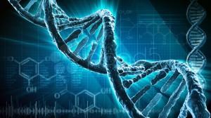 код, генетика