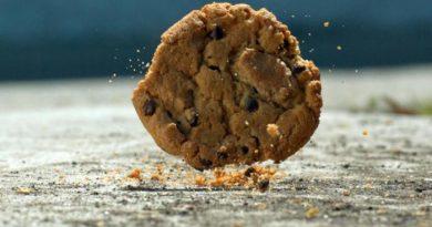 Правило 5 секунд, — съесть или быть съеденным?