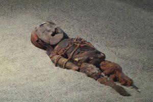 Перед захоронением удаляли мозг и заполняли полость черепа сухими травами