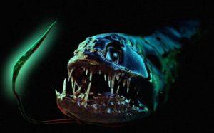 Подземные океаны полный «Чужих», считает эксперт