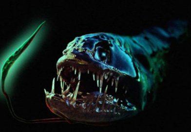 Подземные океаны полны «Чужих»