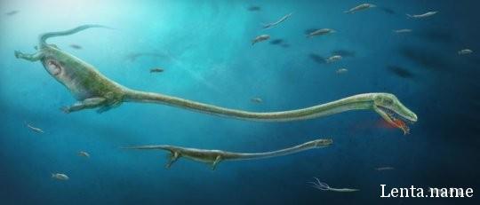 Живорождение у широкой группы доисторических животных пришлось отодвинуть на 50 млн лет