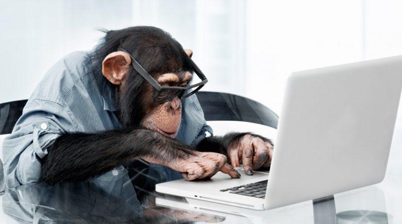 Сайт знакомств для обезьян