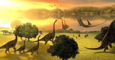 Австралия – это новый парк Юрского периода?