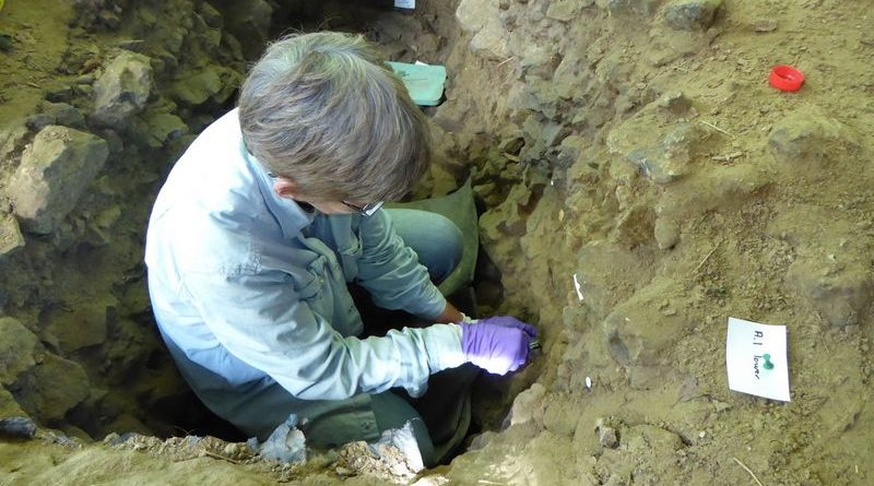 Новая методика является ключевой для изучения эволюции наших предков человека