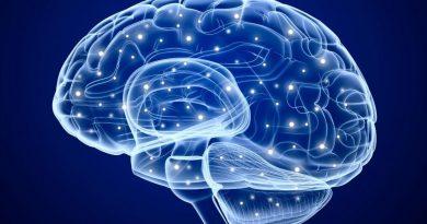 Ученые теперь могут манипулировать клетками мозга с помощью смартфона