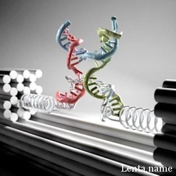 Не давите на молекулу!