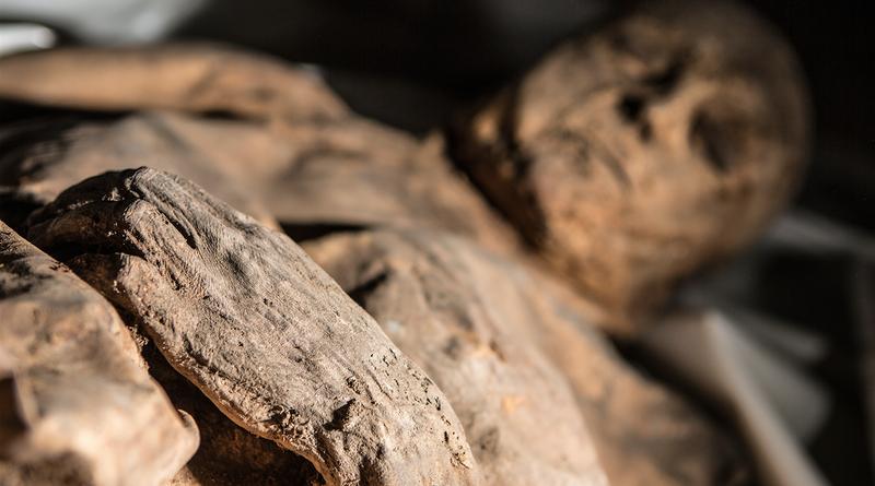 ДНК мумии может помочь разгадать тайну истоков оспы