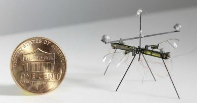 Этот крошечный робот может летать и ходить по воде