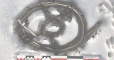 Артефакты, обнаруженные из-за таяния ледяного покрова Норвегии